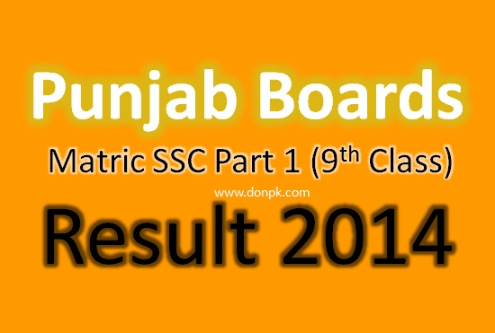 All Punjab Board Online 9th Class Result 2014