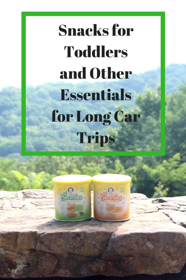 Snacks for Toddlers and Other Essentials for Long Car Trips