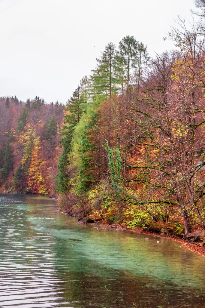 Alpsee bei Schwangau