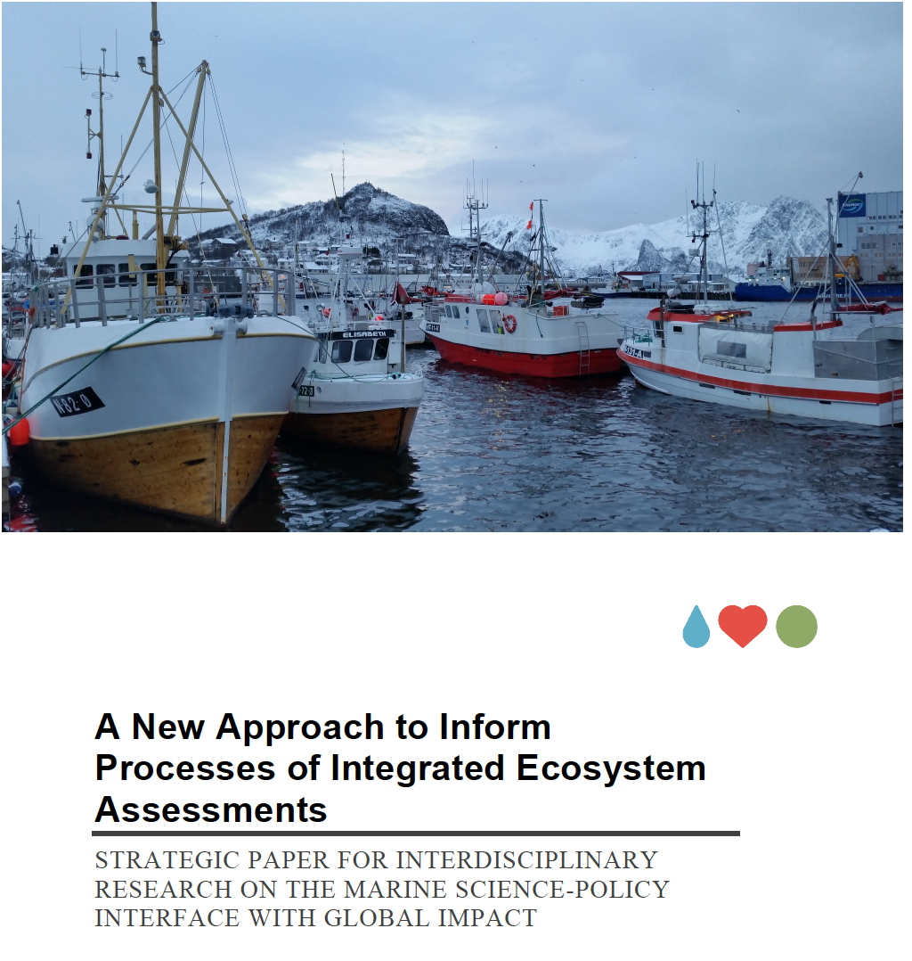 Strategic Paper on Marine Integrated Ecosystem Assessments