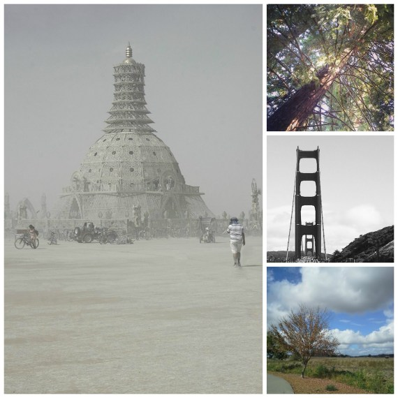 Burning Man - 10 miles... Redwood Tree in Cotati (next town over) - 10 miles... Golden Gate Bridge - 3.2 miles... Petaluma walking trail - 8 miles