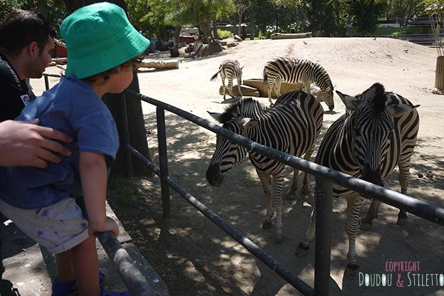 Zoo Barcelone