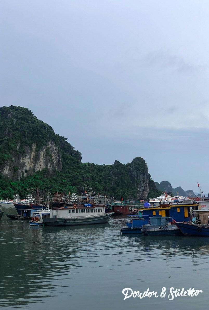 Bai Tu Long12