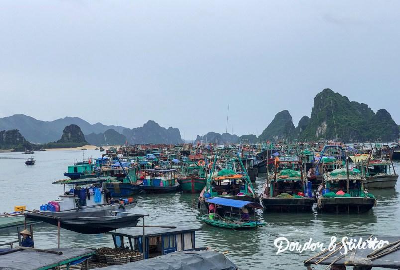Bai Tu Long13