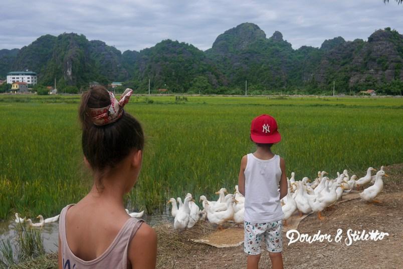Ninh Binh21