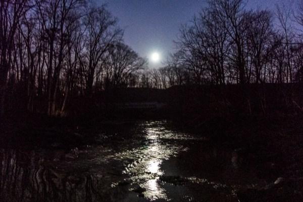 Moonlit stream