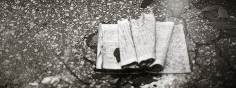 abandoned book