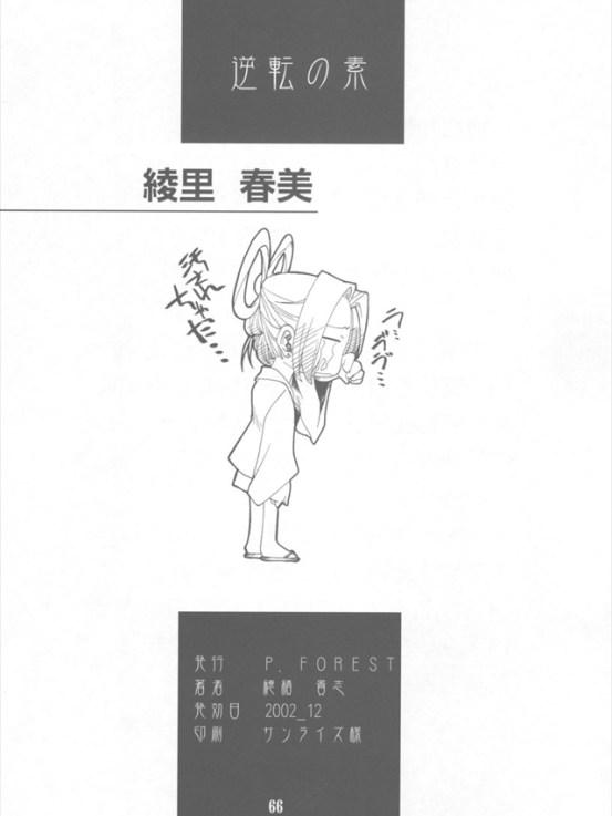 gyakutennomoto064