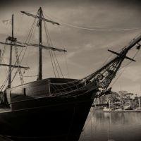 Murder n' Mayhem: Mystery Pirate Adventure on the Bay