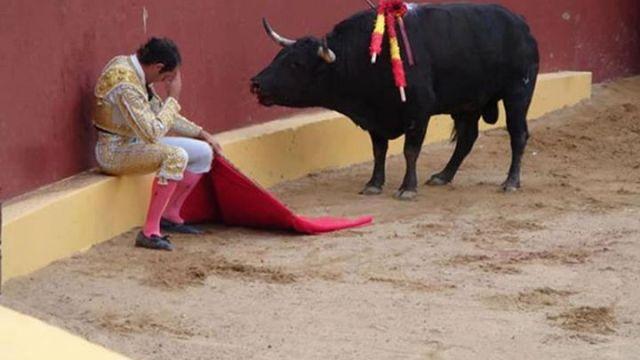 Matador Torero Alvaro Munera and bull
