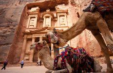 camels-petra-jordan