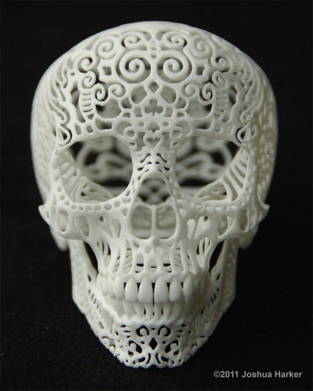 Crania Anatomica Filigre 3d printed skull: front