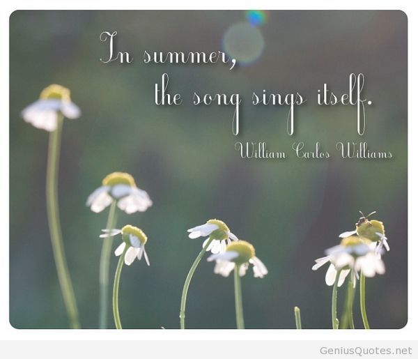 William Carlos Williams quote on summer