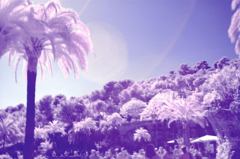 IR Trees - Barcelona
