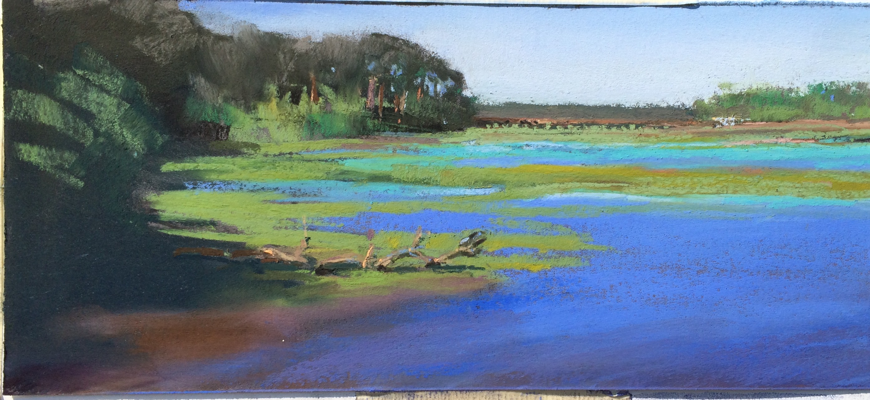 Sightly Tidal Right Before Water Ran A Yellow Crowned Night Heronlanded Postcard From Spring Sc Drawing Motmot Spring Island Sc Golf Spring Island Sc History houzz-03 Spring Island Sc