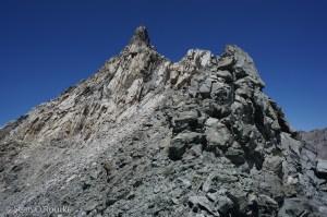 Falcor summit