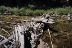 Convenient log bridge