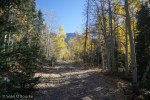 4WD road to Pagosa Peak