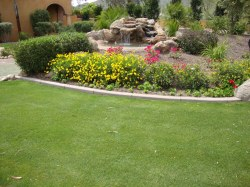 Hilarious Your Arizona Backyard Landscapes Landscaping Backyard Yourself Landscaping Backyard Scottsdale Landscape Design Choosing Design A Bilevel