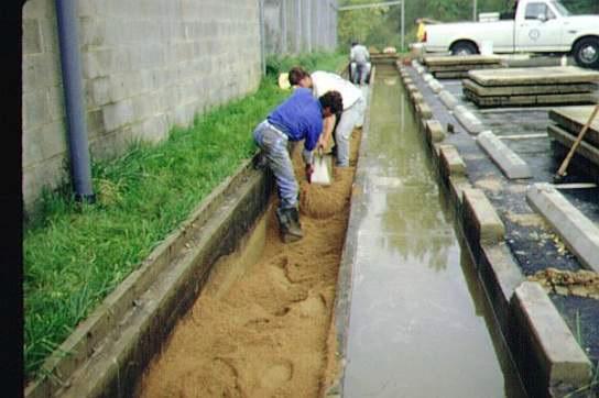 filtro-arena-mantenimiento