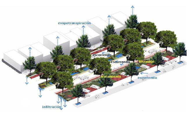 ecoboulevard-planta
