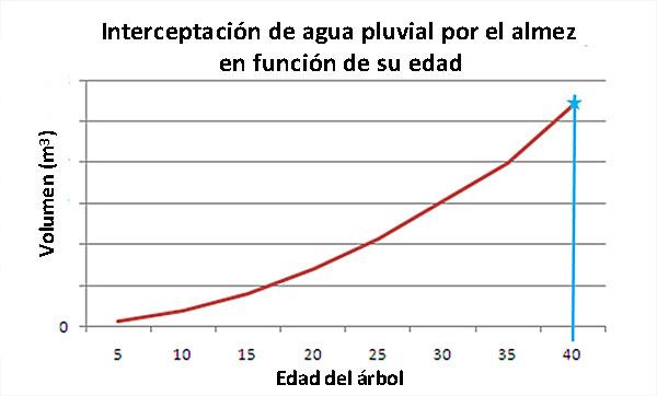 arbol-interceptacion