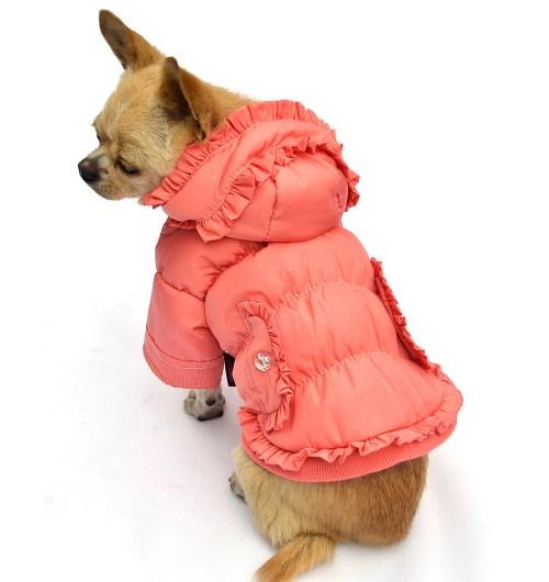 Medium Of Dog Winter Coat