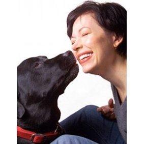 Eduquer son chien : les 7 règles d'or à connaître et à