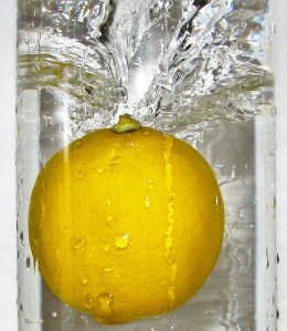 Dried Lemon (1)
