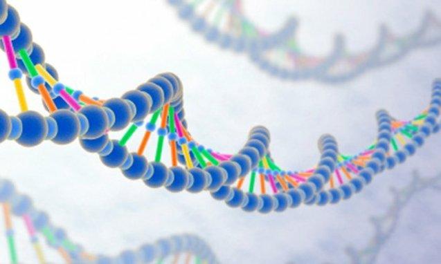Genetic Screening For Optimal Health