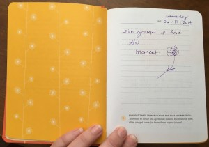 My first entry into the Gratitude Journal, 6/11/2014.