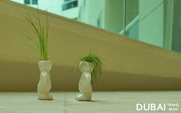 dubizzle plants