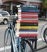 passeio-livrarias-carolina-sul-desejo-literario