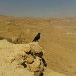 Masada, Izrael, Bliski Wschód