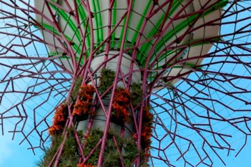 sustainable-design-solar-power-super-trees-01