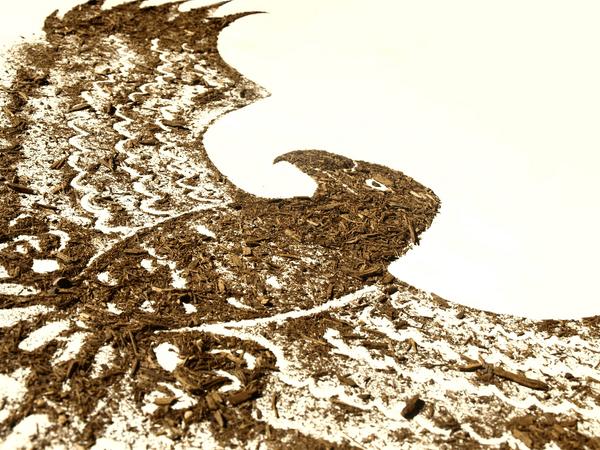 dirt-collection-by-sarah-rosado-03