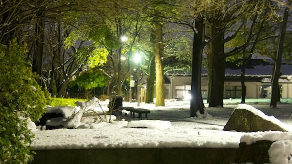 初雪(夜) 3