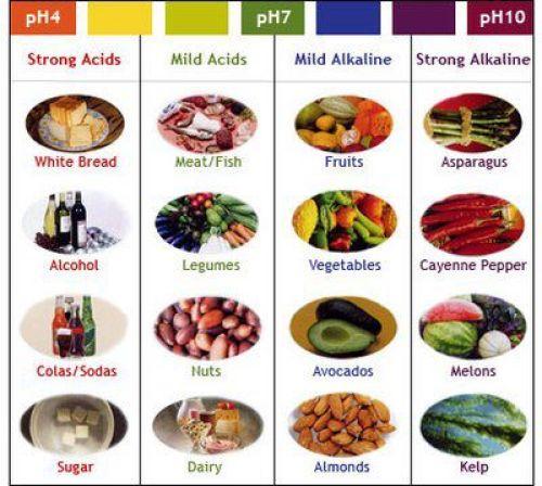 Алкална храна срещу рак