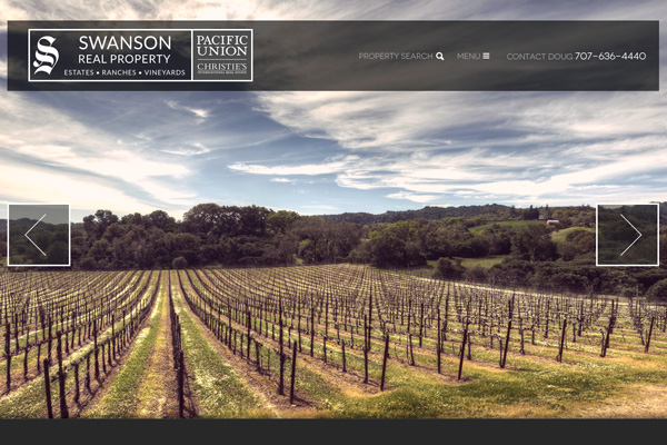 Doug Swanson – Sonoma County Real Estate Agent - website design