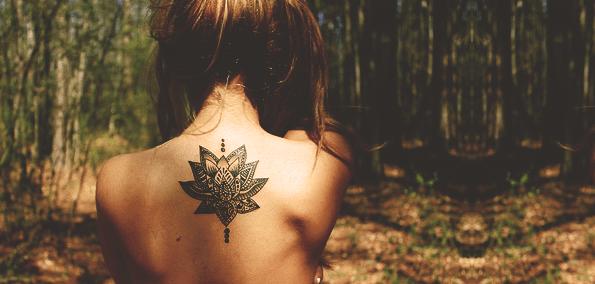 back-woods.png
