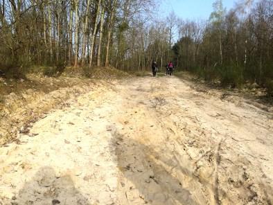 66 k Wanderung Sandweg