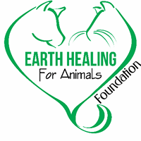 Help Support Earth Healing for Animals Foundation!
