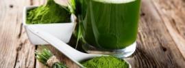 wheatgrass juice and powder