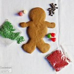 Components of the Gracie's Gingerbread Man Decorating Kit (icing tube not shown)