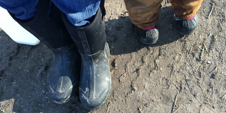 A Day in our Shoes as Dairy Farmers