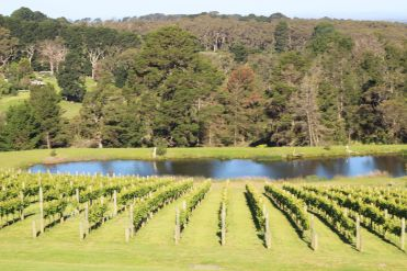 Port Philip Estate, Mornington Peninsula