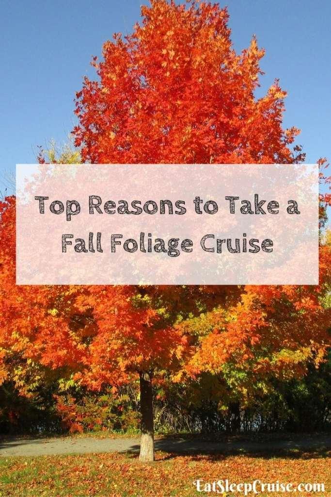 Top Reasons to Take a Fall Foliage Cruise