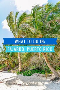 What to do in Fajardo, Puerto Rico