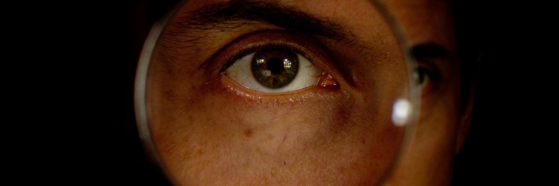 cropped-Joao-through-Bergman-lenses-color2.jpg
