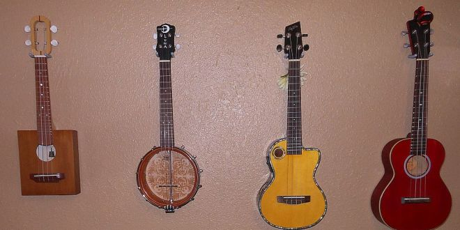 So You Want to Play the Ukelele